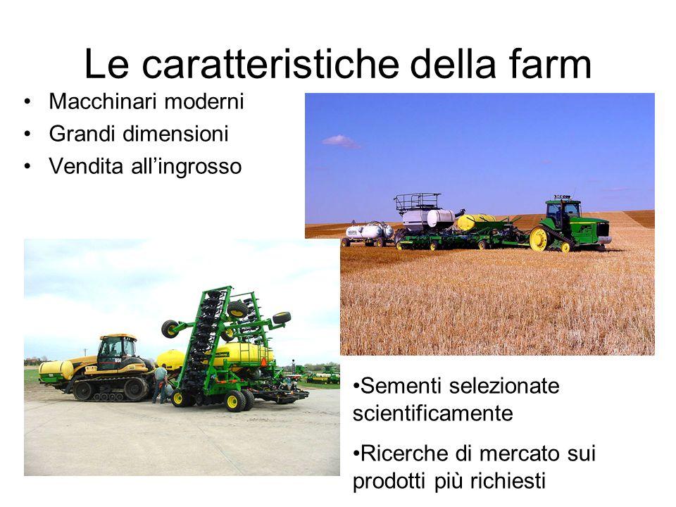 Le caratteristiche della farm