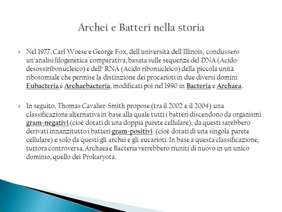 Archei e Batteri nella storia