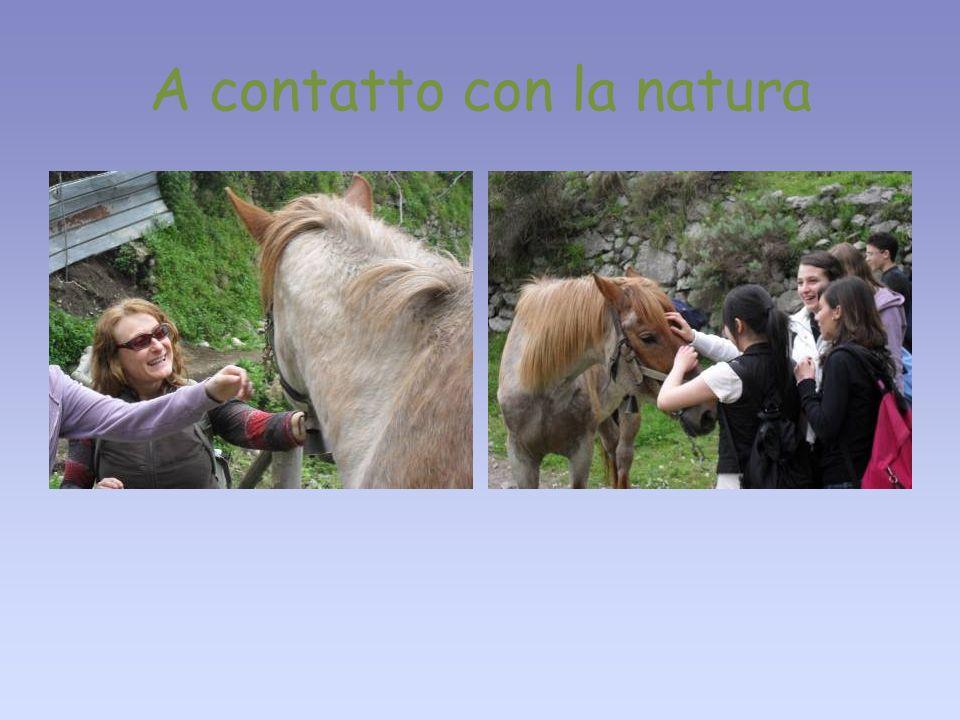 A contatto con la natura