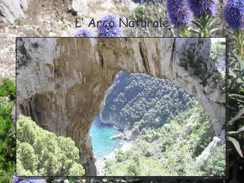 27/05/10 L' Arco Naturale 9