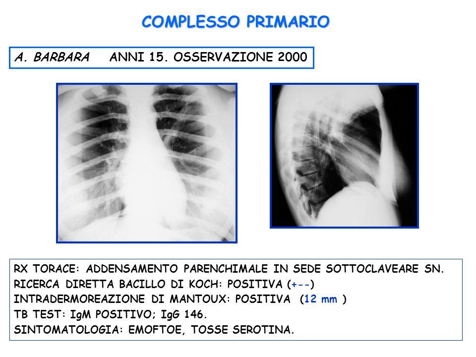 COMPLESSO PRIMARIO A. BARBARA ANNI 15. OSSERVAZIONE 2000