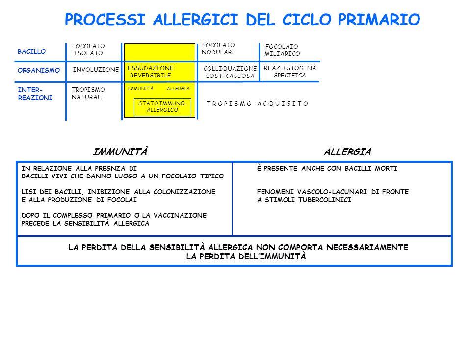 PROCESSI ALLERGICI DEL CICLO PRIMARIO