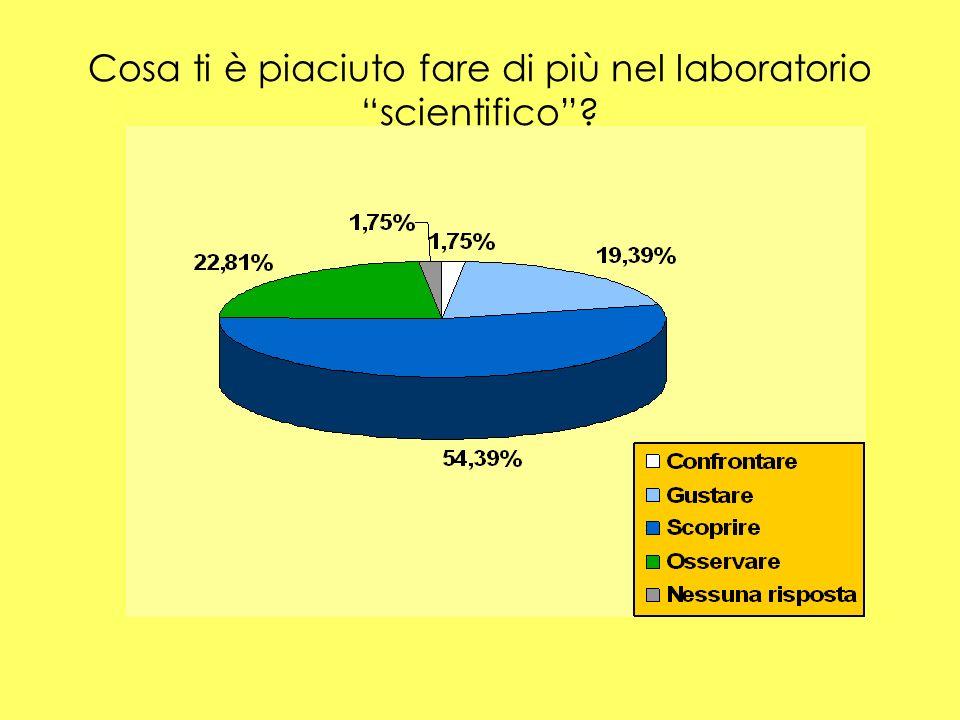 Cosa ti è piaciuto fare di più nel laboratorio scientifico