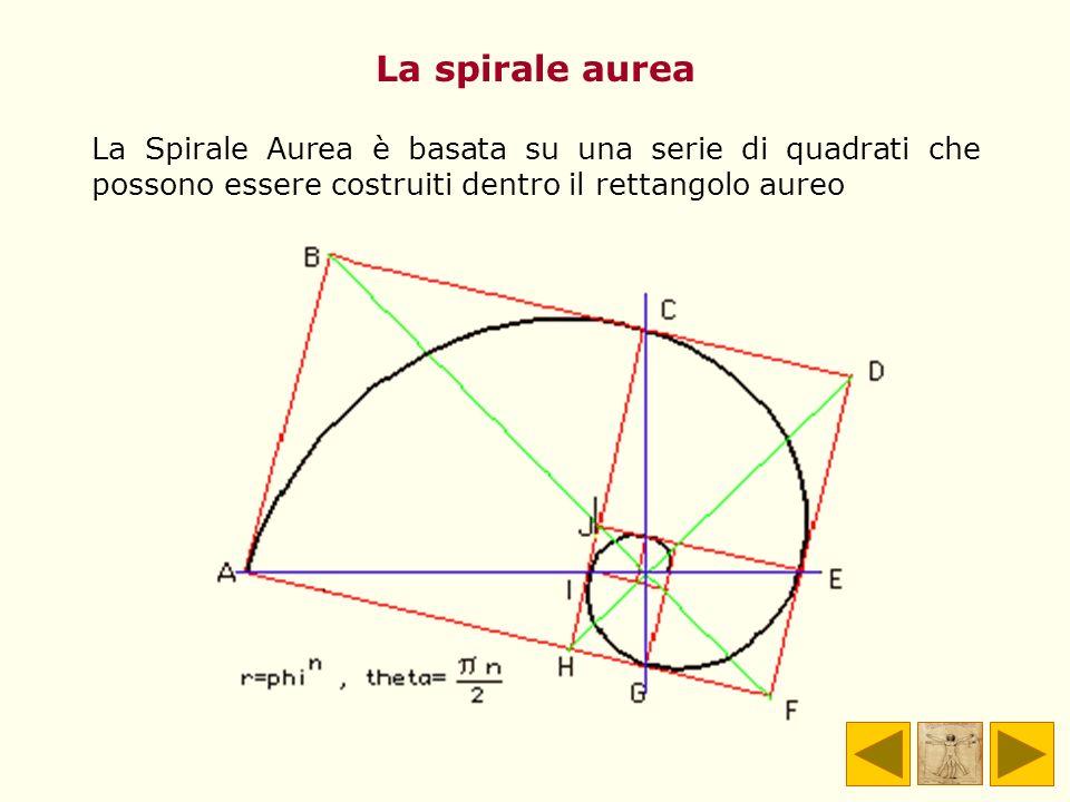 La spirale aurea La Spirale Aurea è basata su una serie di quadrati che possono essere costruiti dentro il rettangolo aureo.