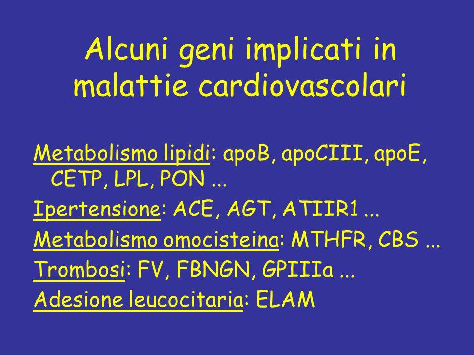 Alcuni geni implicati in malattie cardiovascolari