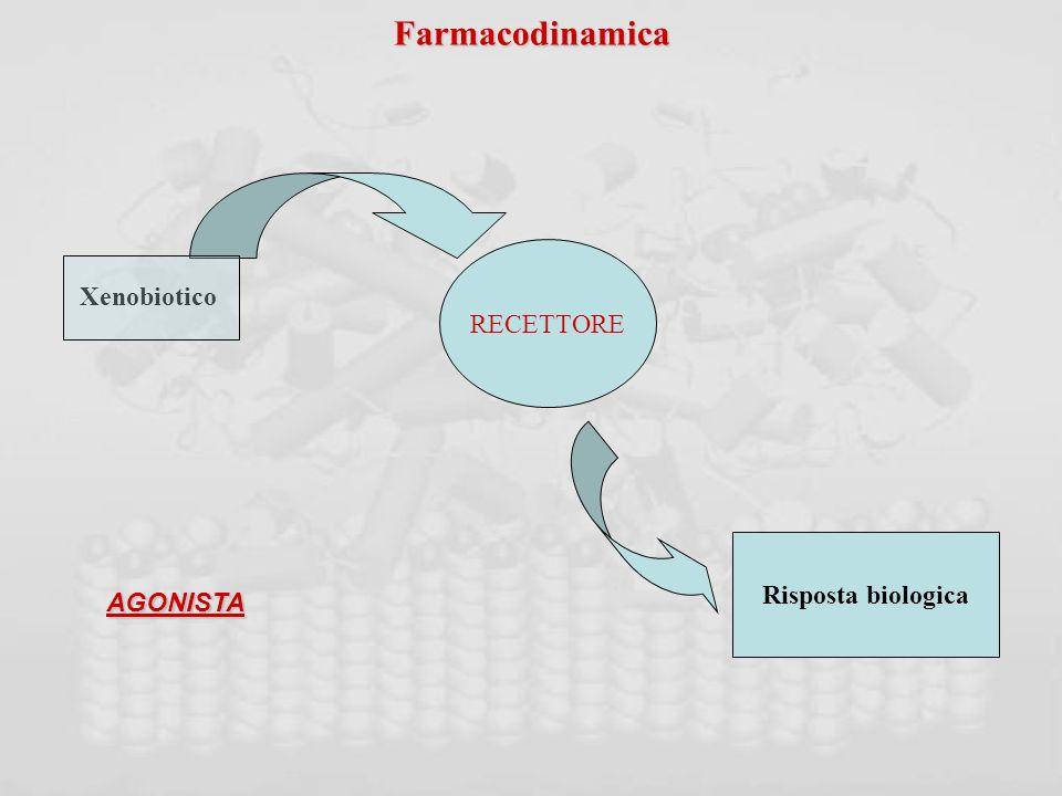 Farmacodinamica RECETTORE Xenobiotico Risposta biologica AGONISTA