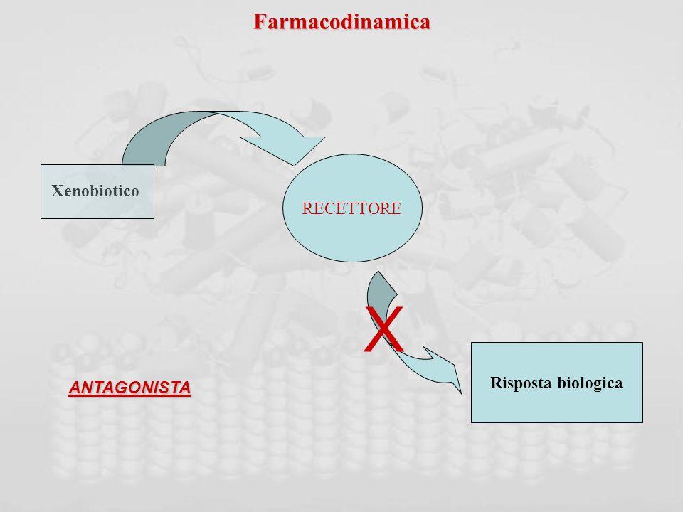 Farmacodinamica RECETTORE Xenobiotico X Risposta biologica ANTAGONISTA