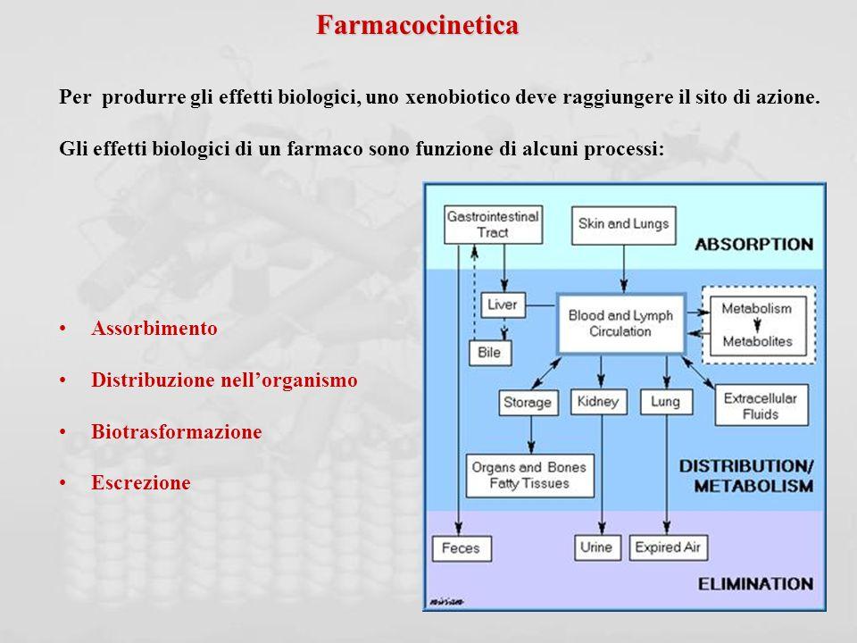Farmacocinetica Per produrre gli effetti biologici, uno xenobiotico deve raggiungere il sito di azione.