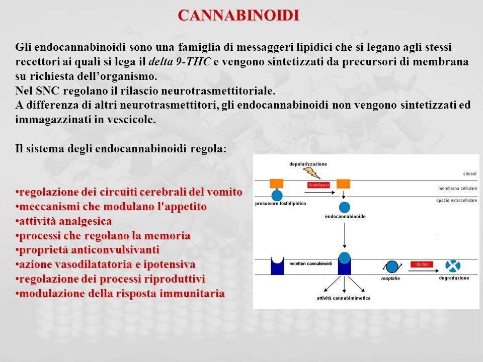 CANNABINOIDI Gli endocannabinoidi sono una famiglia di messaggeri lipidici che si legano agli stessi.