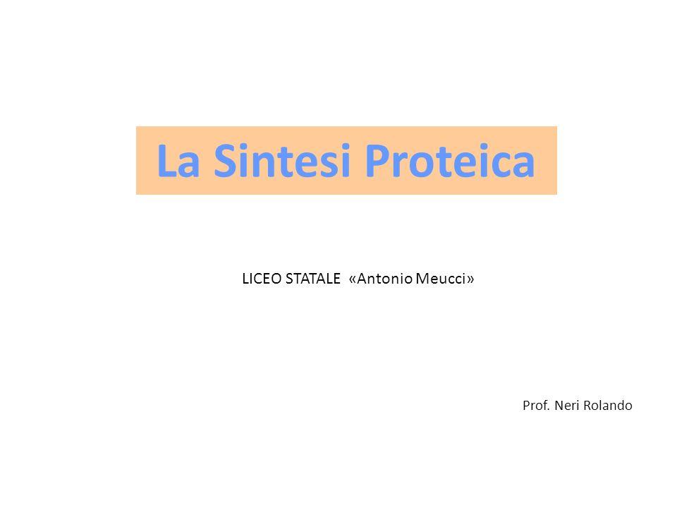 LICEO STATALE «Antonio Meucci»