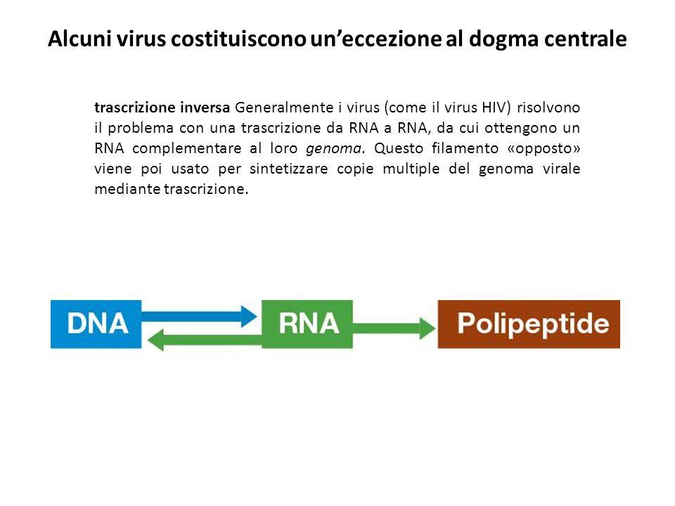 Alcuni virus costituiscono un'eccezione al dogma centrale