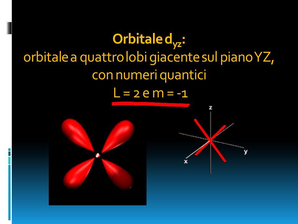 Orbitale dyz: orbitale a quattro lobi giacente sul piano YZ, con numeri quantici L = 2 e m = -1
