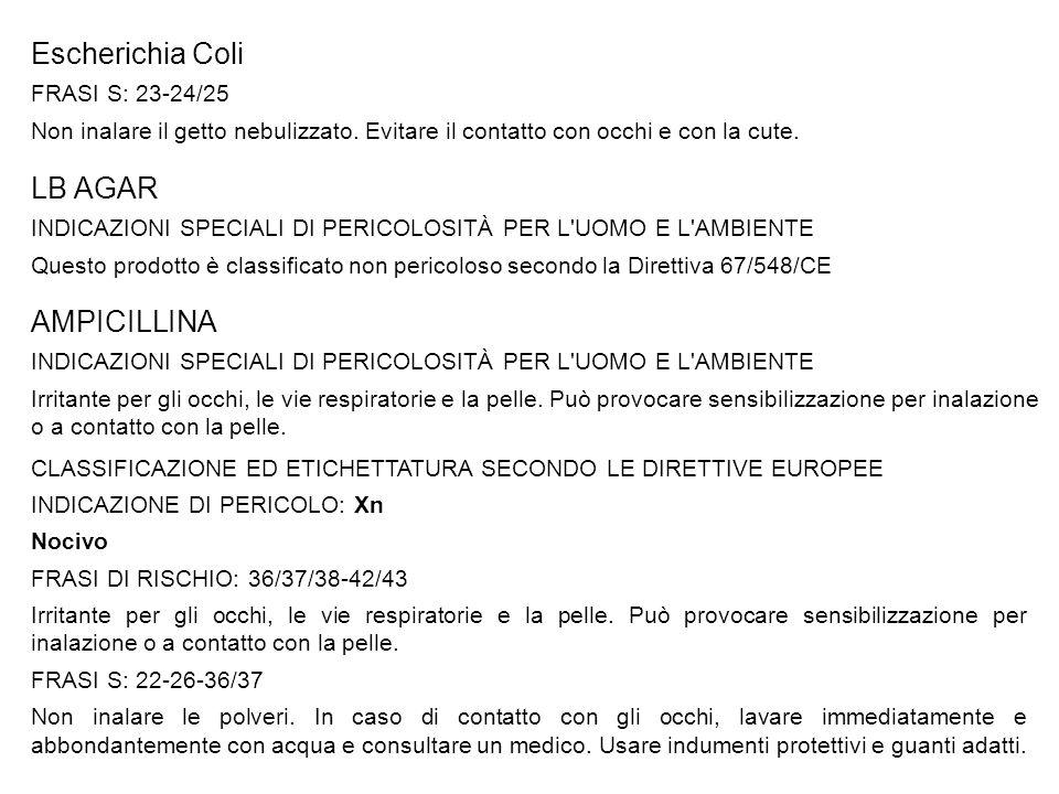 Escherichia Coli LB AGAR AMPICILLINA FRASI S: 23-24/25