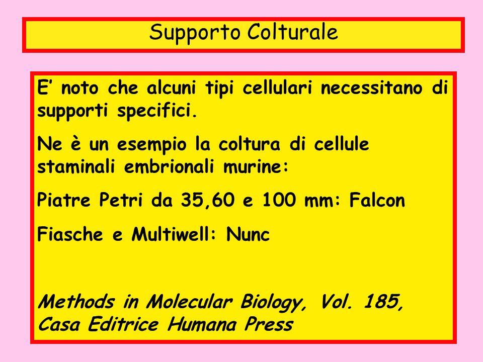 Supporto Colturale E' noto che alcuni tipi cellulari necessitano di supporti specifici.