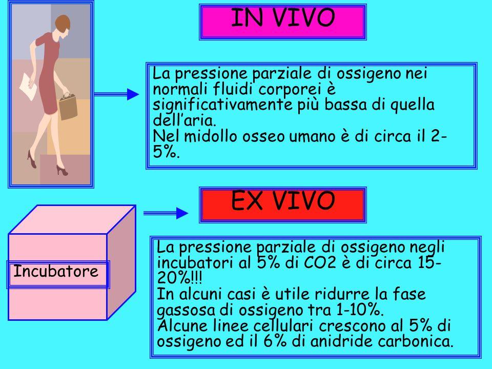 IN VIVO La pressione parziale di ossigeno nei normali fluidi corporei è significativamente più bassa di quella dell'aria.