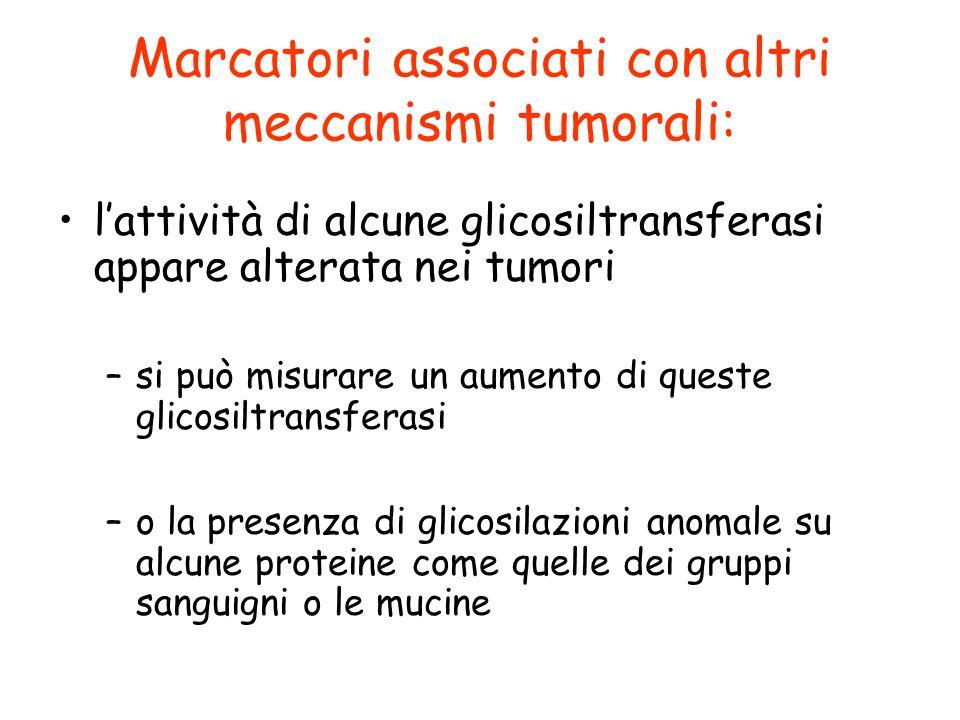 Marcatori associati con altri meccanismi tumorali: