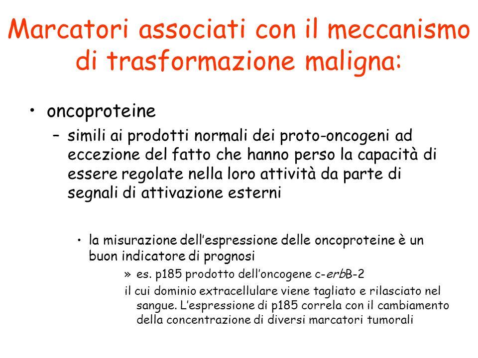 Marcatori associati con il meccanismo di trasformazione maligna: