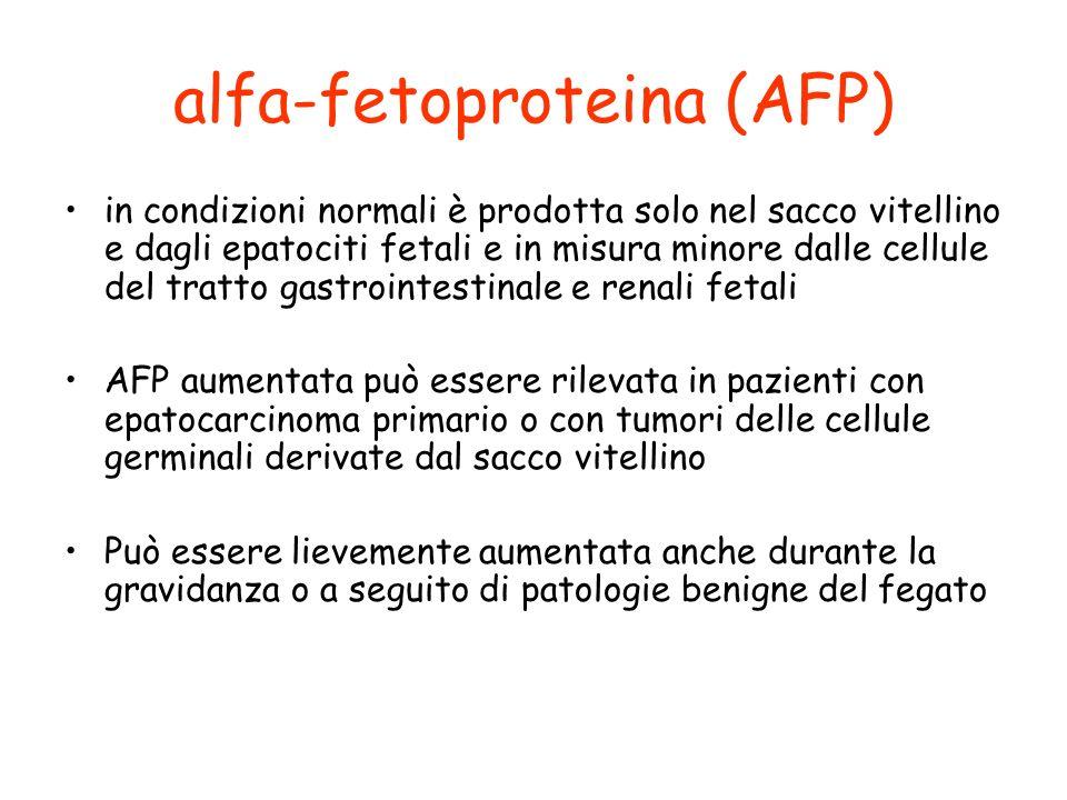 alfa-fetoproteina (AFP)