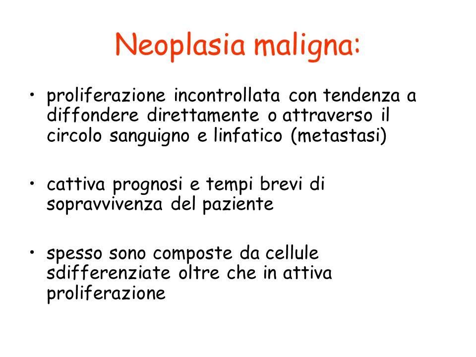 Neoplasia maligna: proliferazione incontrollata con tendenza a diffondere direttamente o attraverso il circolo sanguigno e linfatico (metastasi)