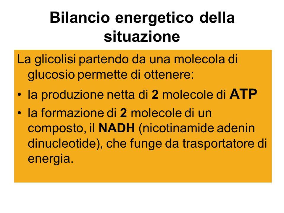 Bilancio energetico della situazione
