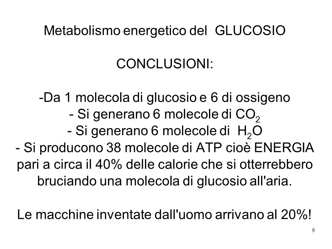 Metabolismo energetico del GLUCOSIO CONCLUSIONI: