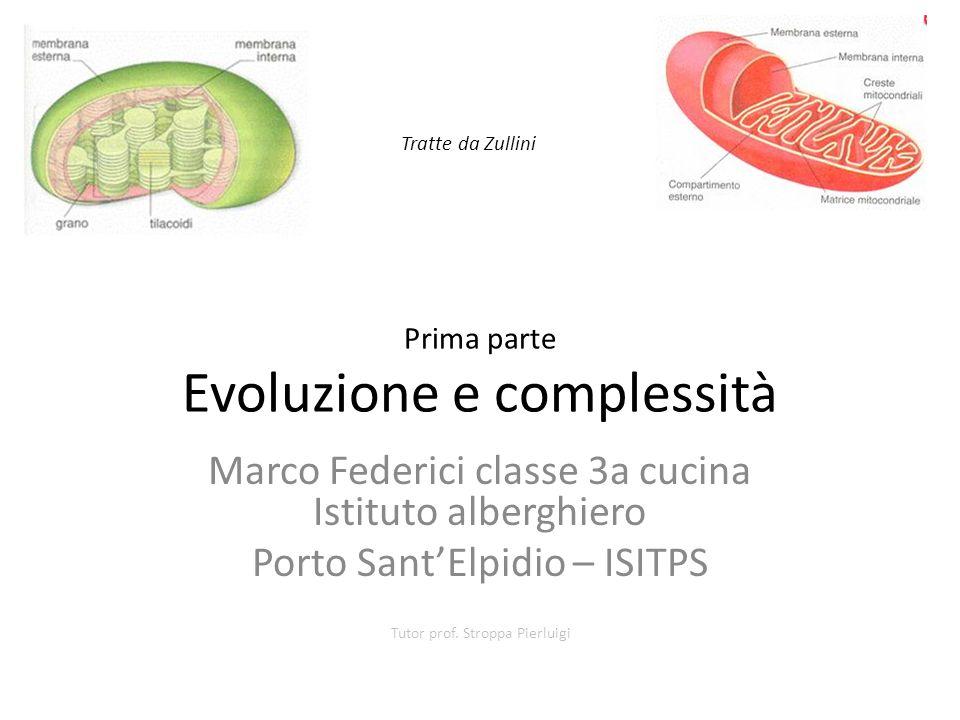 Prima parte Evoluzione e complessità