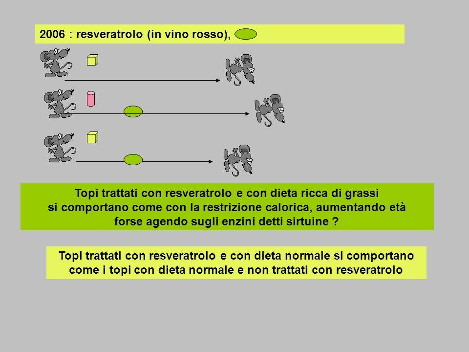 2006 : resveratrolo (in vino rosso),