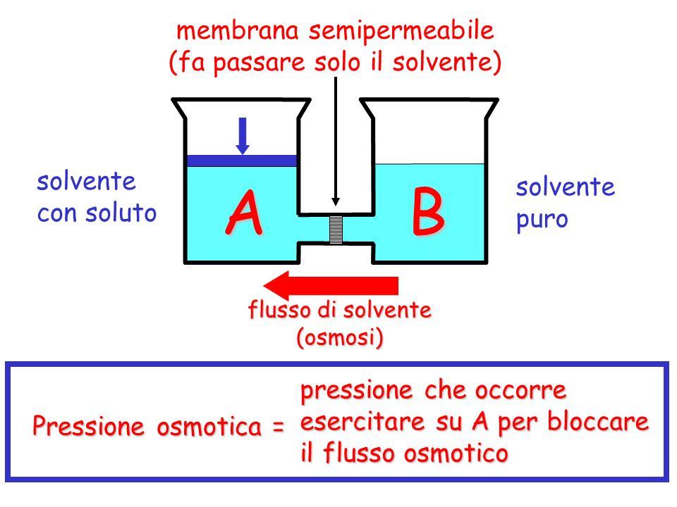 A B membrana semipermeabile (fa passare solo il solvente) solvente