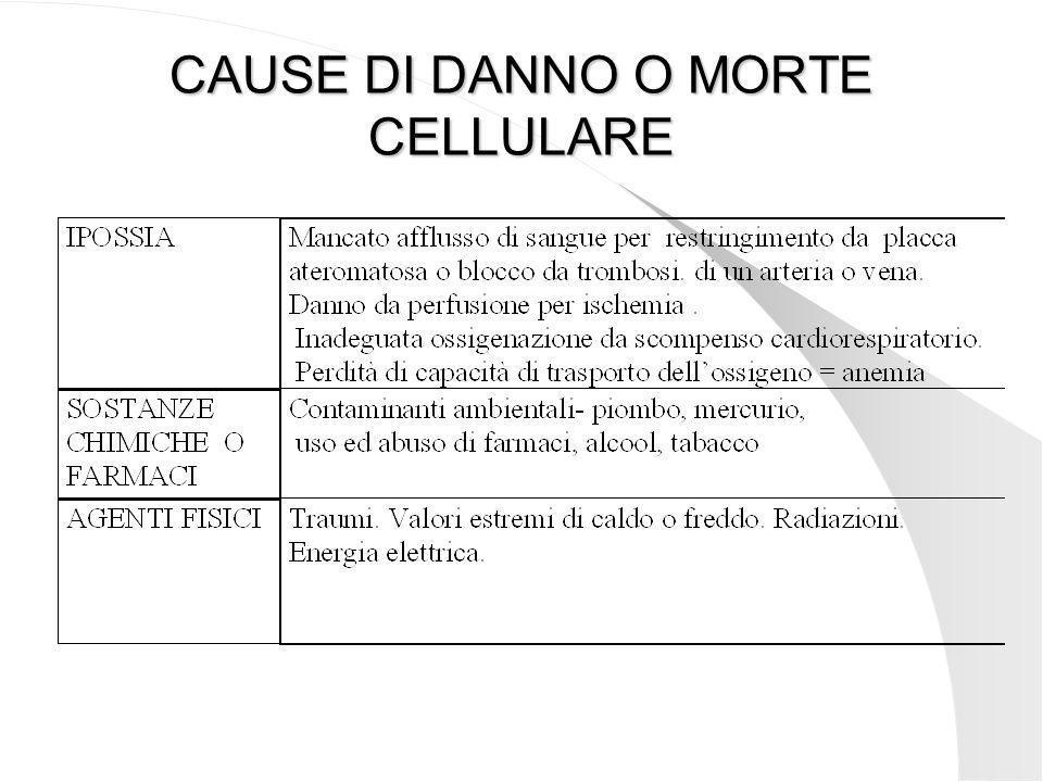 CAUSE DI DANNO O MORTE CELLULARE