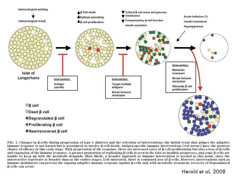 Herold et al. 2008