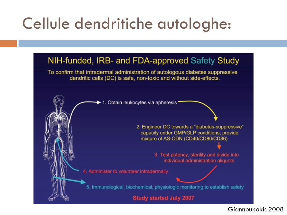 Cellule dendritiche autologhe: