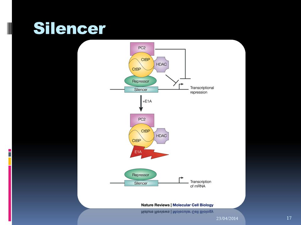 Silencer 29/03/2017