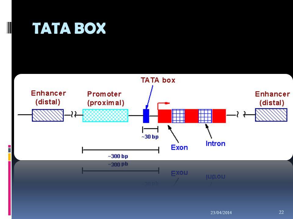 TATA BOX 29/03/2017