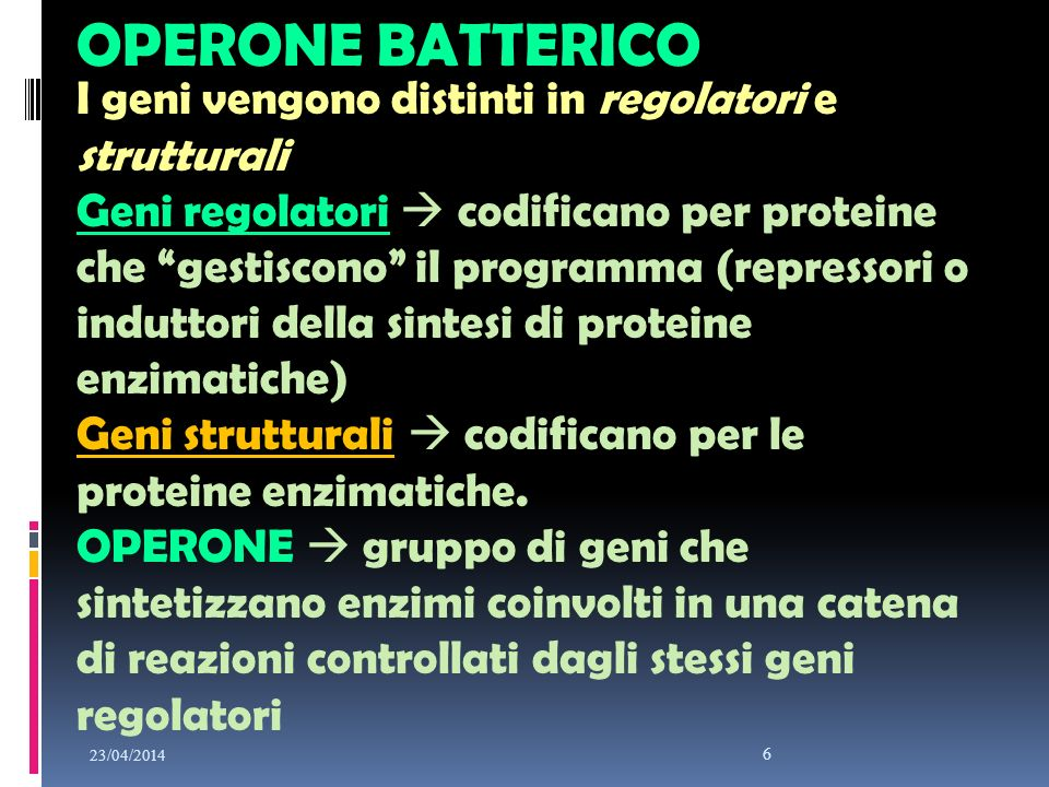 OPERONE BATTERICO