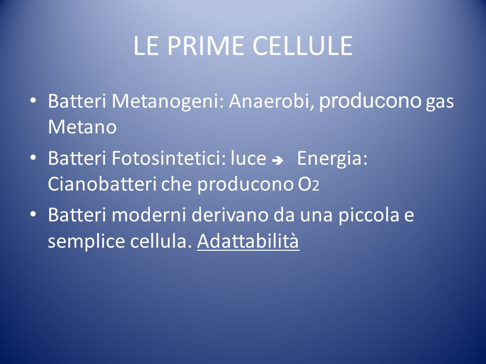 LE PRIME CELLULE Batteri Metanogeni: Anaerobi, producono gas Metano
