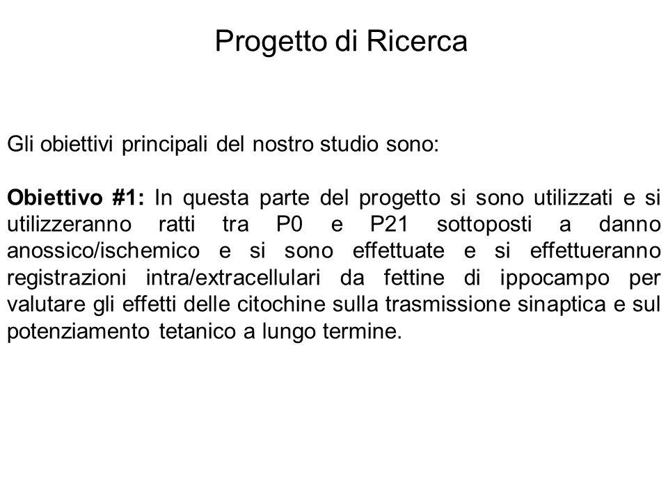 Progetto di Ricerca Gli obiettivi principali del nostro studio sono: