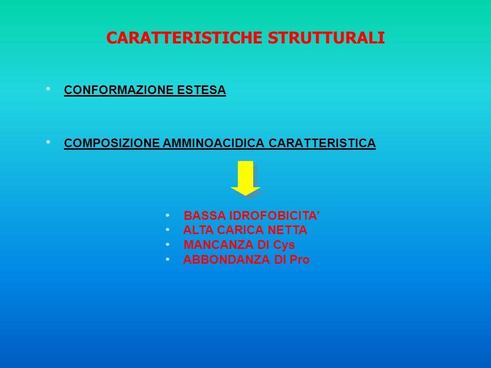 CARATTERISTICHE STRUTTURALI