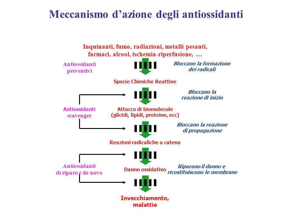 Meccanismo d'azione degli antiossidanti