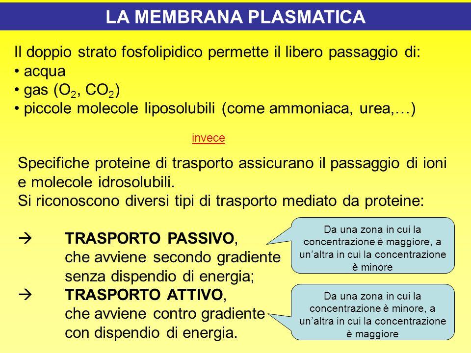 In questa presentazione vengono affrontati i seguenti argomenti ppt video online scaricare - Diversi tipi di energia ...