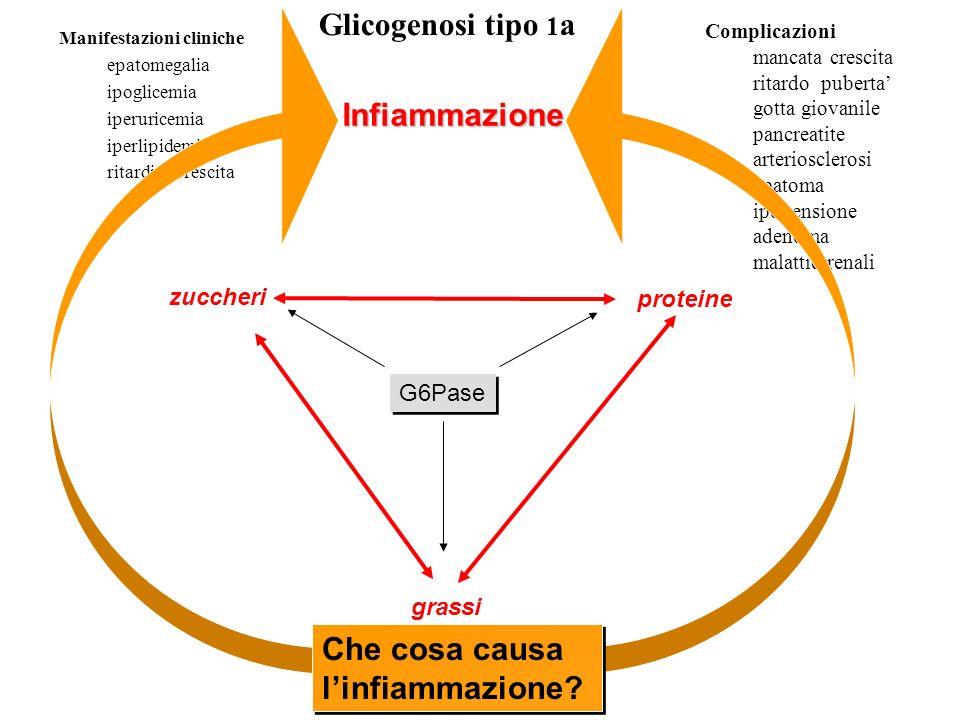 Che cosa causa l'infiammazione