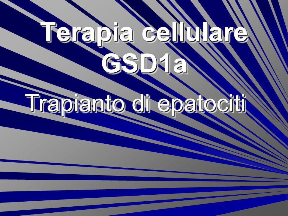 Terapia cellulare GSD1a