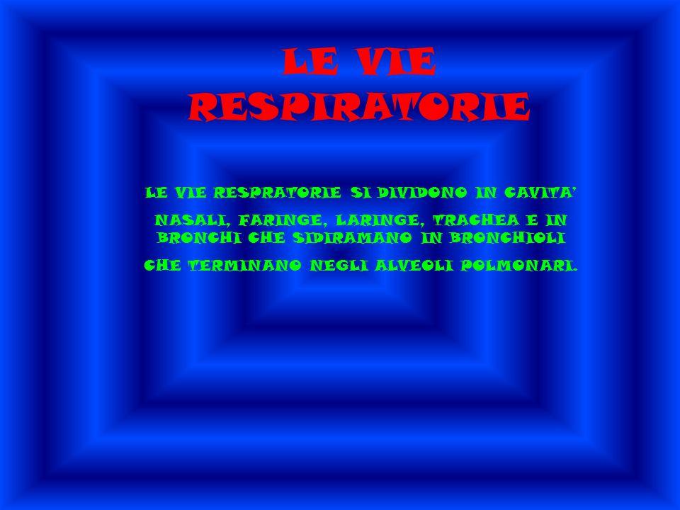 LE VIE RESPIRATORIE LE VIE RESPRATORIE SI DIVIDONO IN CAVITA'