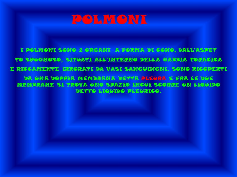 POLMONI I POLMONI SONO 2 ORGANI A FORMA DI CONO, DALL'ASPET