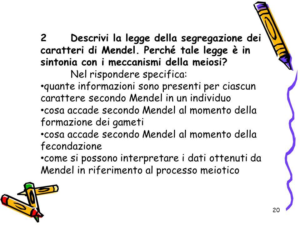 2. Descrivi la legge della segregazione dei caratteri di Mendel