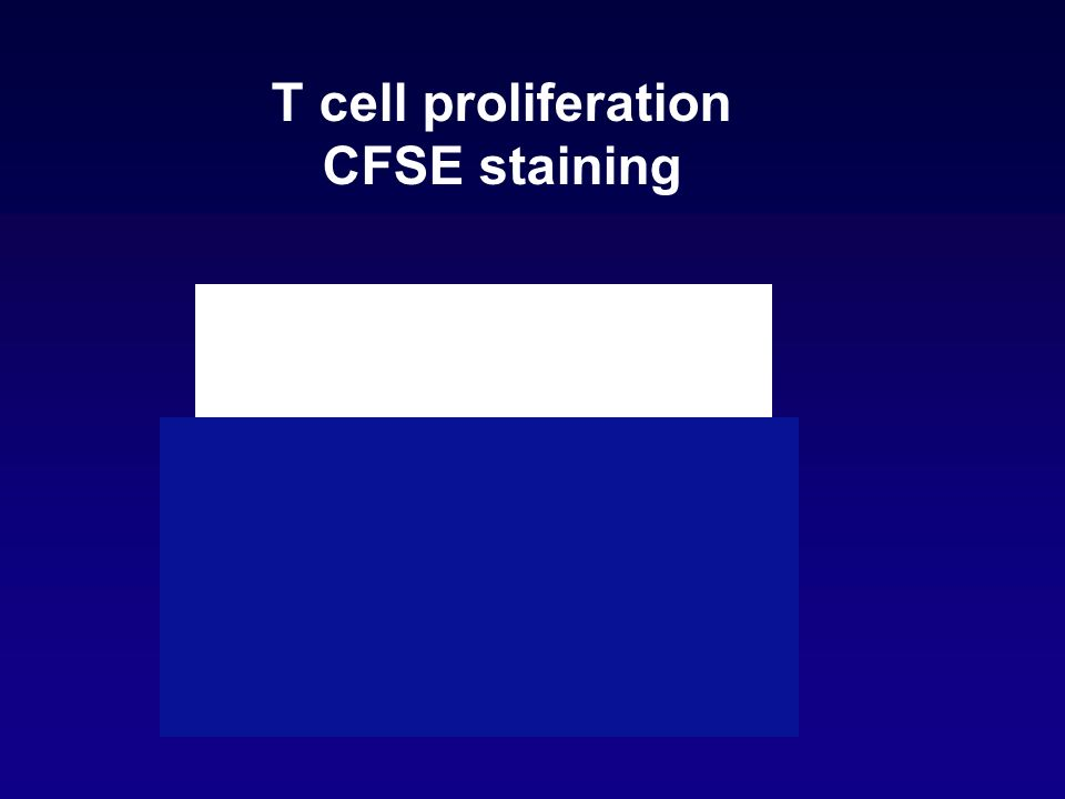T cell proliferation CFSE staining