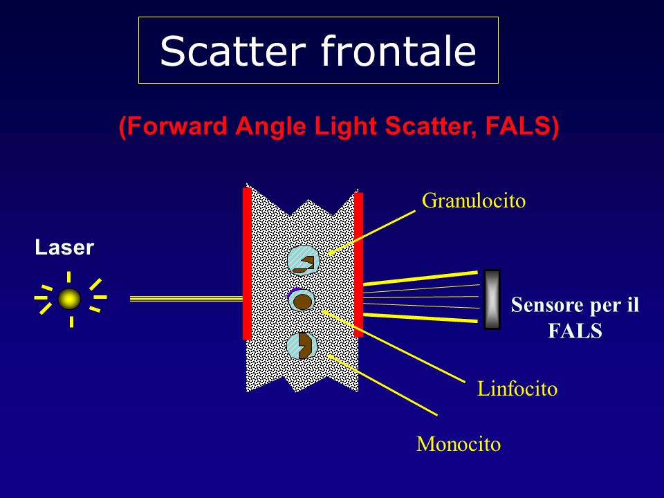 (Forward Angle Light Scatter, FALS)