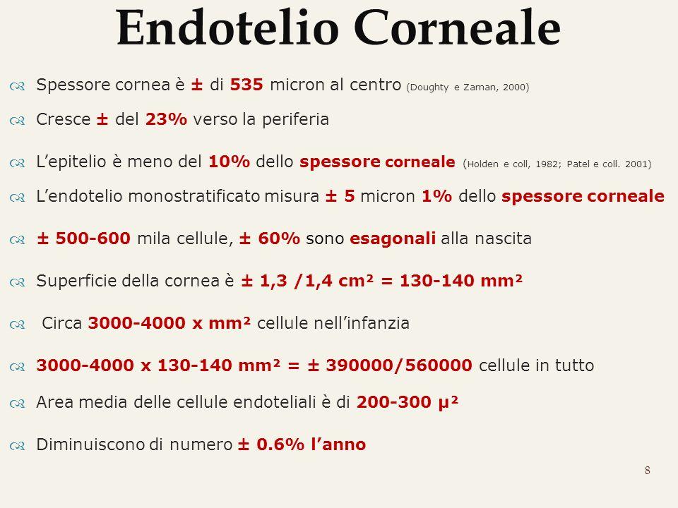 Endotelio Corneale Spessore cornea è ± di 535 micron al centro (Doughty e Zaman, 2000) Cresce ± del 23% verso la periferia.