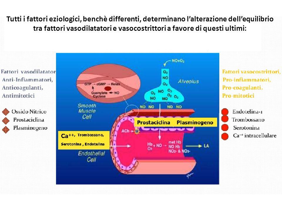 Tutti i fattori eziologici, benchè differenti, determinano l'alterazione dell'equilibrio tra fattori vasodilatatori e vasocostrittori a favore di questi ultimi: