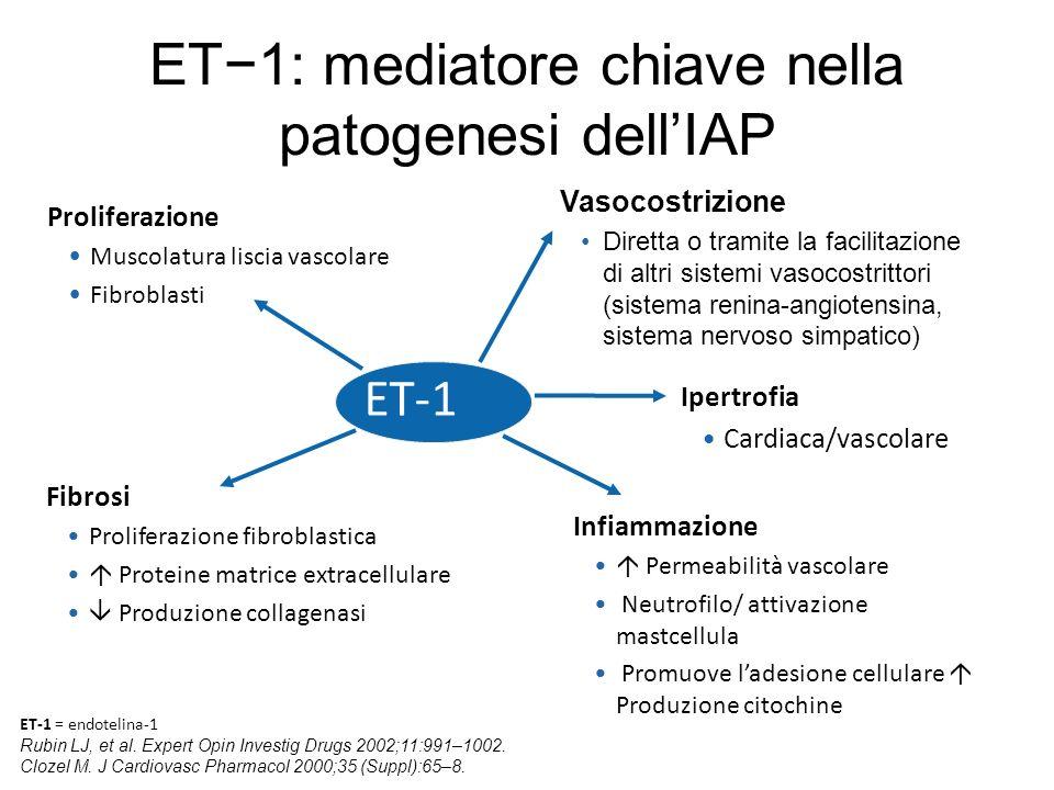 ET−1: mediatore chiave nella patogenesi dell'IAP
