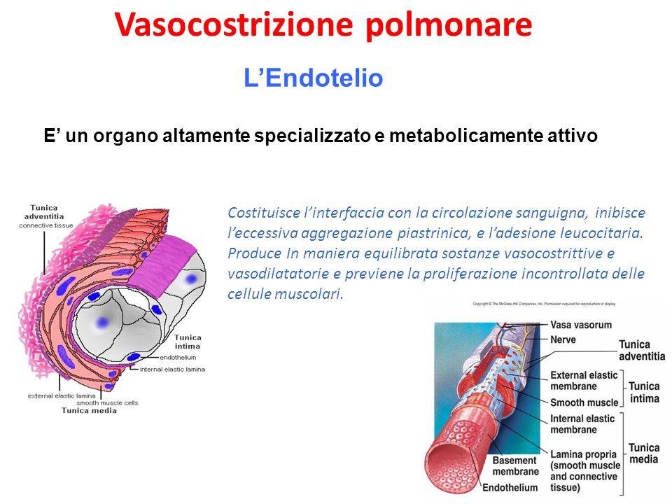 Vasocostrizione polmonare
